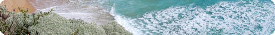 Ascm toulon apn e news - Horaires piscine toulon port marchand ...
